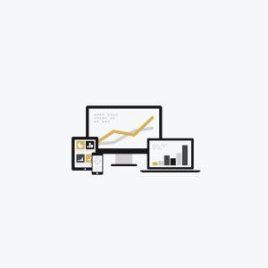 Starter Website Care Plan